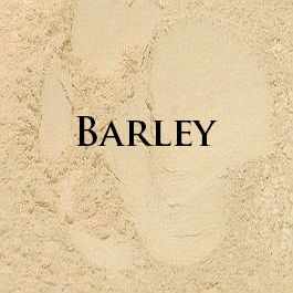Elemental Beauty Pure Mineral Foundation Barley